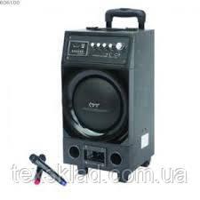 Акция!!!!!! Комбо-колонка Y9 Kenlong с радиомикрофонами