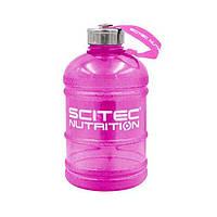 Бутылка Scitec Nutrition Hydrator (1 л) скайтек нутришн гидратор