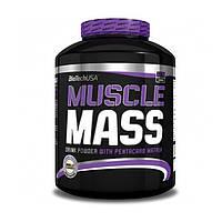 Гейнер BioTech Muscle Mass (2.27 кг) биотек максл масс