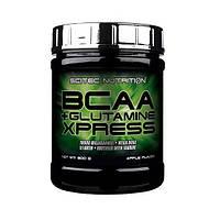 БЦАА Scitec Nutrition BCAA + Glutamine Xpress (300 г) бцаа скайтек нутришн бцаа глютамин икспрес