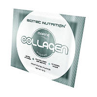 Коллаген Scitec Nutrition Collagen Powder (1 x 12 г) скайтек нутришн коллаген павдер