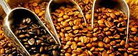 Як вибрати каву, ступінь обжарювання і помел.