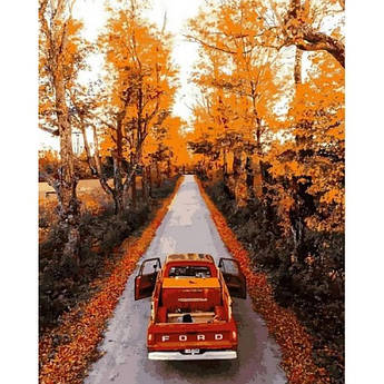 Картина по номерам Осенняя дорога, 40x50 см., Mariposa