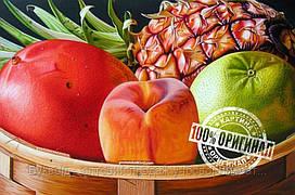 Игра Вундеркинд Картины по номерам 30x40cm (VD 011) Тропические фрукты