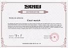 Cпортивные мужские часы Skmei (Скмей) 1285 Small, фото 10