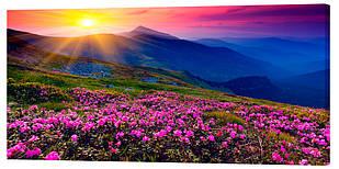 Картина на полотні Декор Карпати Альпійські луки 50х100 см (p712)
