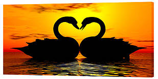 Картина на полотні Декор Карпати Лебедина любов 50х100 см (z148)
