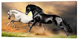 Картина на полотні Декор Карпати Коні 50х100 см (z180)