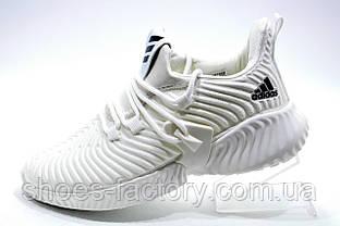 Белые кроссовки в стиле Adidas Originals Alphabounce Instinct, White
