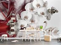 """3D фотообои """"Орхидея и лебеди"""""""