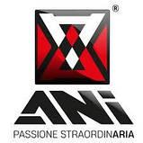 Пистолет под антигравий A206-SP ANI Spa AH0921133 (Италия), фото 2