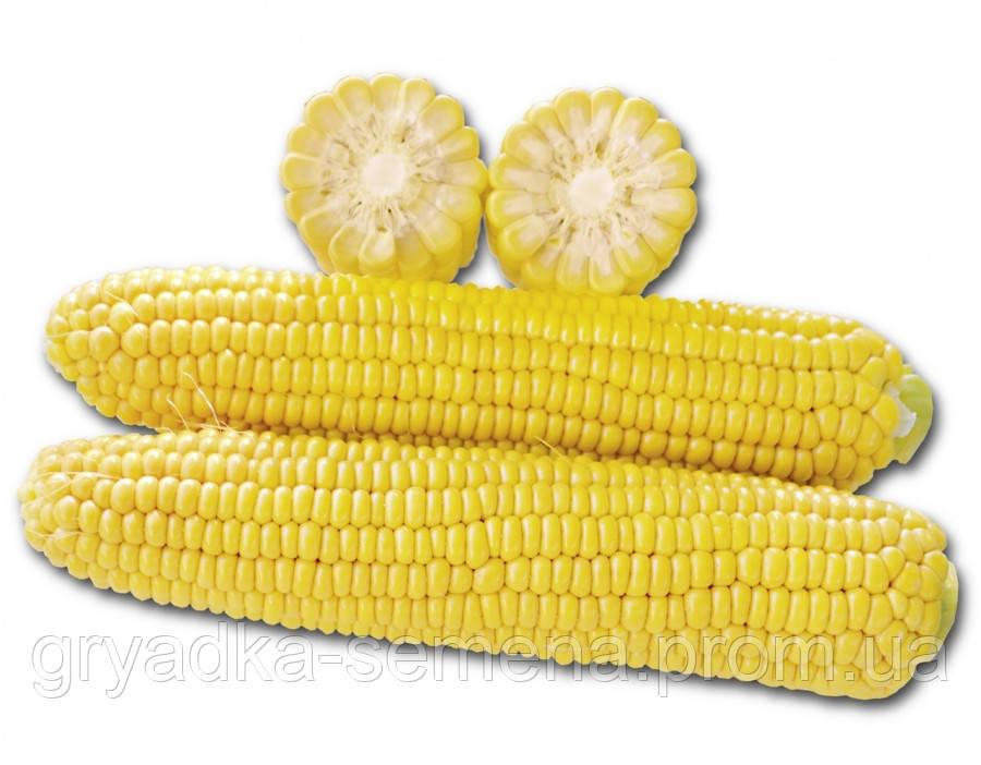 Кукуруза 1010 F1 Lark seeds 25 000 семян