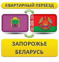 Квартирный Переезд из Запорожья в Беларусь!