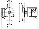 Циркуляционный насос Aruna RM 25-6-180, фото 4
