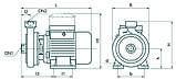 Центробежный поверхностный насос Насосы+Оборудование CDK18 Poliv, фото 4