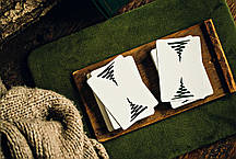 Карты игральные   Erdnase X Madison by Ellusionist, фото 3