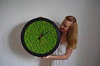 Часы из стабилизированного мха в рамке из дерева, фото 1