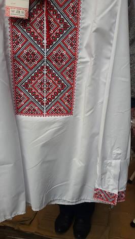 Мужская вышиванка крестиком, фото 2