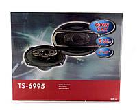 Автоколонки TS 6995 max 600w Акция!