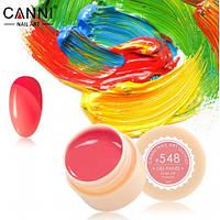 Гелевая краска №548 Canni, 5мл