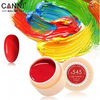 Гелевая краска №545 Canni, 5мл