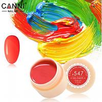 Гелевая краска №547 Canni, 5мл