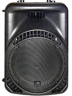 Акустическая система HL Audio MACK12A