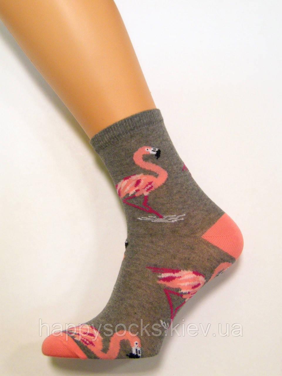 Шкарпетки жіночі бавовняні з яскравими фламінго