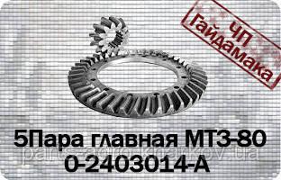 50-1701105-Б  Шестерня главной передачи МТЗ-80,82 z=12
