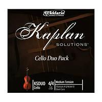 D'Addario KSDUO 4/4M 2 струны для виолончели (A+D), средней жесткости