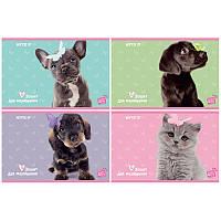 SP19-241 Альбом для рисования (12 листов) KITE 2019 Studio Pets 241