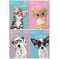 SP19-243 Альбом для рисования (30 листов) KITE 2019 Studio Pets 243
