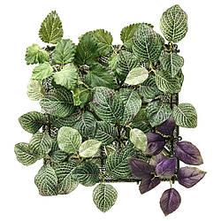 Искусственное растение IKEA FEJKA 26x26 см настенное зеленое лиловое 203.495.32
