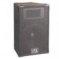 Акустическая система SoundKing SKFI042 4 Ом
