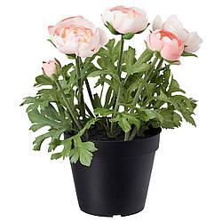 Искусственное растение в горшке IKEA FEJKA 12 см лютик розовый 003.952.90