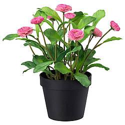 Искусственное растение в горшке IKEA FEJKA 12 см розовая ромашка 103.953.36