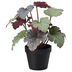 Искусственное растение в горшке IKEA FEJKA 12 см 303.952.98
