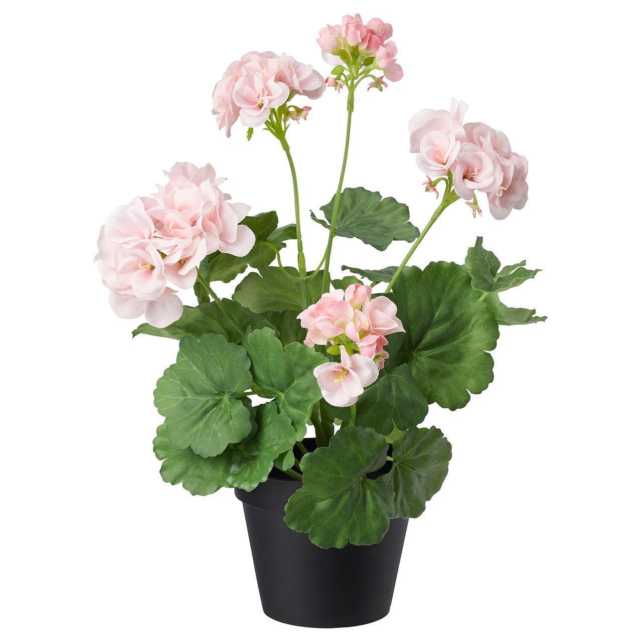 Искусственное растение в горшке IKEA FEJKA 12 см розовый пеларгоний 703.953.43