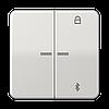 Таймер універсальний Bluetooth CD1751BTBR CD1751BTLG