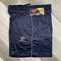 Штаны спортивные мужские AO Longcom, размеры XL-5XL, модель 0361-1, синие