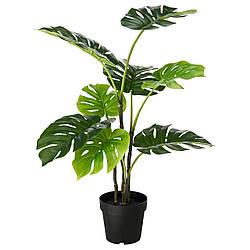 Искусственное растение в горшке IKEA FEJKA 19 см Monstera 403.952.88