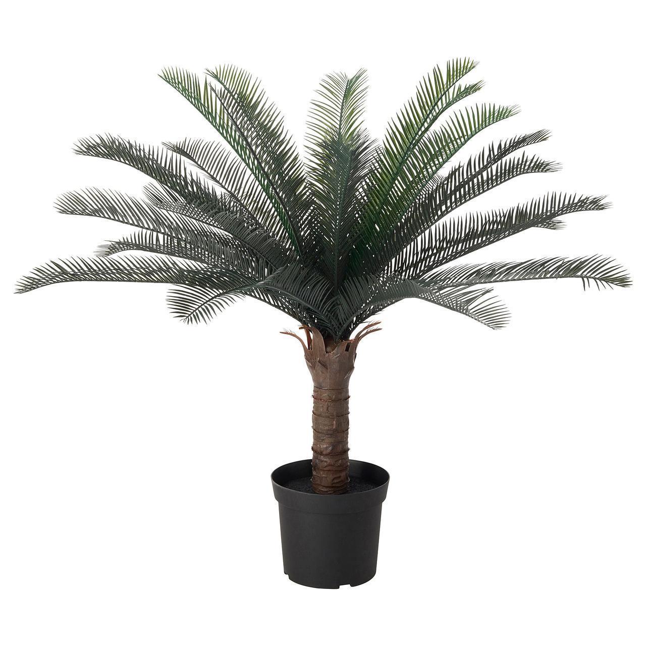 Искусственное растение в горшке IKEA FEJKA 19 см пальма саго 304.103.12