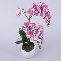 Орхидея латексная в кашпо двойная (фиолетовая)  Цветы искусственные