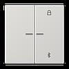 Таймер универсальный Bluetooth LS1751BTLG
