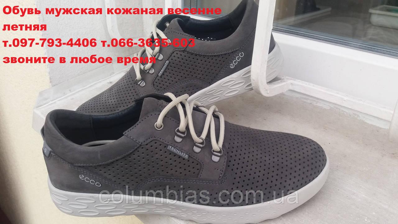 a75955695 Польские летние кроссовки ecco серые: продажа, цена в ...