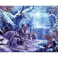 Картина по номерам Волчья зима 40Х50 VP1101