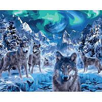 """Картина по номерам, картина-раскраска """"Волки и северное сияние"""" 40Х50см VP1102"""