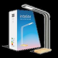 Настольная умная лампа Intelite DL5 8W (димминг, эксклюзивный дизайн) прозрачная DL5-8W-TRL