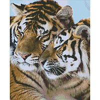 Алмазная вышивка Тигры,  40х50 см, фото 1