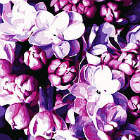 Художественный творческий набор, картина по номерам Цветы сирени, 40x40 см, «Art Story» (AS0512), фото 1
